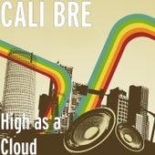 High as a Cloud de Calibre