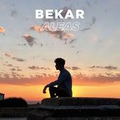 Aléas de Bekar