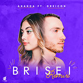 Brisei (GUDI Remix - Radio Edit) de Ananda