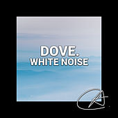 White Noise Dove (Loopable) by Musica Relajante