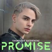 Promise by Panagiotis Chatzipapas