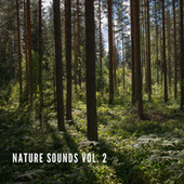Nature Sounds Vol.2, Nature Music to Sleep by Nature Sounds (1)