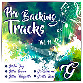 Pro Backing Tracks G, Vol.11 - Karaoke Version Originally Performed By Pop Music Workshop by Pop Music Workshop