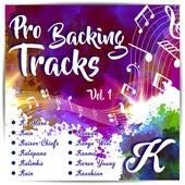 Pro Backing Tracks K, Vol.1 by Pop Music Workshop