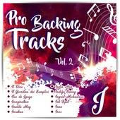 Pro Backing Tracks I, Vol.2 by Pop Music Workshop