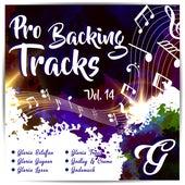 Pro Backing Tracks G, Vol.14 - Karaoke Version Originally Performed By Various Artists by Pop Music Workshop
