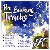 Pro Backing Tracks K, Vol.2 by Pop Music Workshop