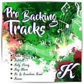 Pro Backing Tracks K, Vol.3 by Pop Music Workshop
