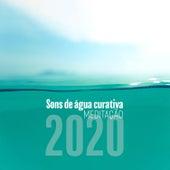 Sons de Água Curativa: Meditação 2020 - A Natureza Soa para Atenção Plena, Dormir, Yoga, Música de Relaxamento de Meditação e Espiritualidade Musica Academia