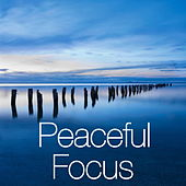 Peaceful Focus by Various Artists