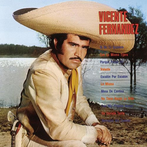 Si No Te Quisiera by Vicente Fernández