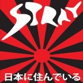 Live in Japan di Stray