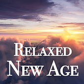 Relaxed New Age by Various Artists