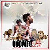 Odomfo Bi by Nana Amankwah Tiah