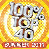 100% Top 40 Hits : Summer 2011 by Audio Groove