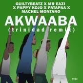 AKWAABA (Trinidad Remix) di Machel Montano