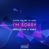 I'm Sorry (Abriviatura IV Remix) van Dj Quba Stefre Roland