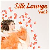 Silk Lounge, Vol. 3 (A Journey Through Silky Clouds) by Various Artists