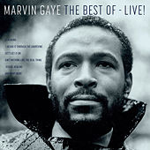 The Best Of Marvin Gaye - Live van Marvin Gaye