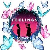 Feelings von Joevasca