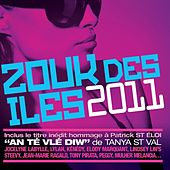Zouk des iles 2011 di Various Artists