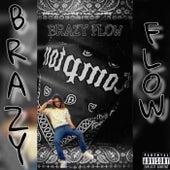 BRAZY FLOW (Freestyle) de Jay Brazy
