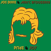 Pride and Joy de Joe Diffie