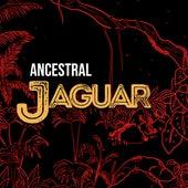 Ancestral de Jaguar