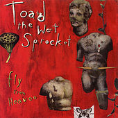 Fly From Heaven EP by Toad the Wet Sprocket