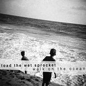 Walk On The Ocean EP by Toad the Wet Sprocket