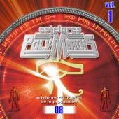 Estelares Polymarchs: Versiones Completas De La Producción 08, Vol. 1 von Various Artists