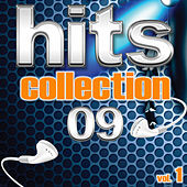 Hits Collection 09, Vol. 1 von Various Artists