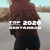 Top Sertanejo 2020 de Various Artists