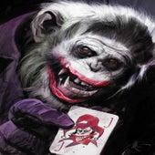 Joker de International Jefe