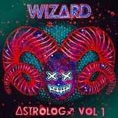 WizArd Astrology, Vol. I von Wizard
