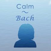 Calm Bach de Johann Sebastian Bach