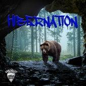 Hibernation de Rah Grizz