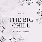 The Big Chill, Vol. 1 by Various Artists