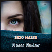 2020 March - Phone Number by Melson