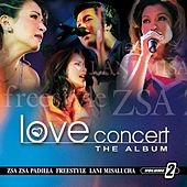 Love Concert The Album Vol. 2 by Various Artists