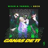 Ganas de Ti de Wisin y Yandel