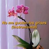No me gustan los grises (Instrumental) de Mery Granados