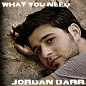 What You Need von Jordan Barr
