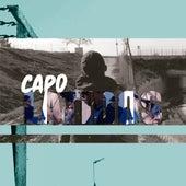 Latidos von Capo