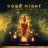 Good Night Sleep Music (Full Body Detox Music) von Meditative Mind
