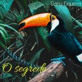 O Segredo by Danu Figueira