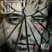 Inside My Head by Stump