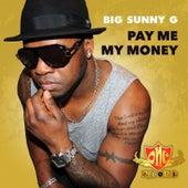 Pay Me My Money de Big Sunny G