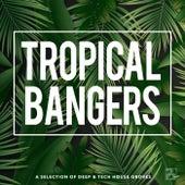 Tropical Bangers de Various Artists