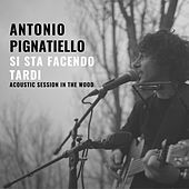 Si sta facendo tardi (Acoustic session in the wood) di Antonio Pignatiello